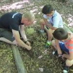 Bush Craft in Creech Woods